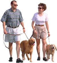 couple-walking-dogs