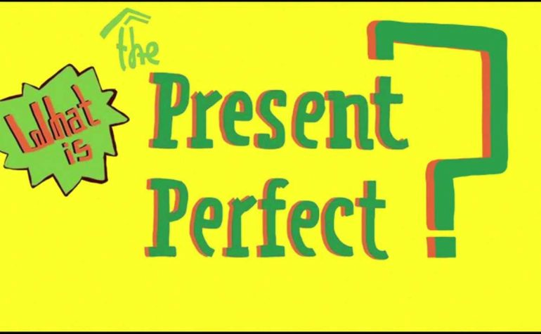 Lesson 9: Have (present tense)  S + has / have